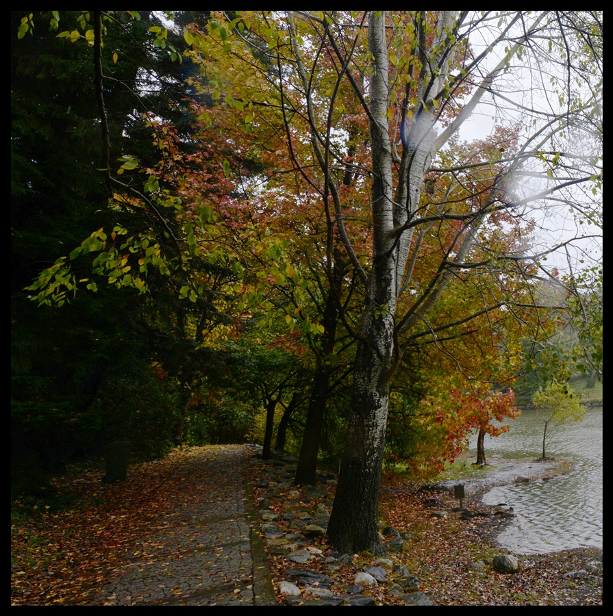 bir_demet_sonbahar_autumn_bouquet_bl07_fatihgelincik